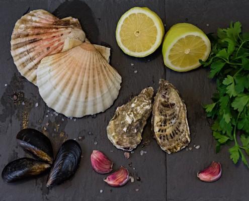 composizione fotografica di cappesante ostriche e cozze